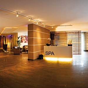 spa-business-plan